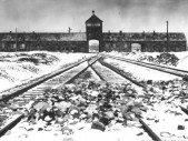71 let od osvobození Osvětimi