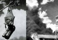 Napalmoví netopýři, loď z ledu a další šílené historické zbraně