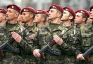 Mobilizace Armády České republiky