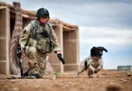Vojákův pes zemřel žalem ten samý den, co mu zabili páníčka
