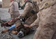 Drak - psí hrdina US Marines s purpurovým srdcem
