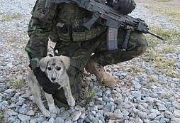 Čeští vojáci zachránili Míšu