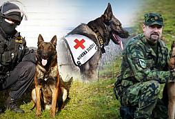 Pocta všem služebním psům z ozbrojených, bezpečnostních a záchranných složek
