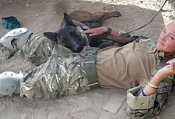 Psí veteráni z Afghánistánu, kteří měli být utraceni, se dočkali záchrany
