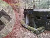 MUNA: co skrývá les Bukovec?