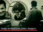 Podívejte se, jak dopadli naši vojáci na LSD