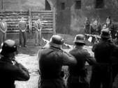 Tip na film:  Vyšší princip - nejlépe hodnocený válečný snímek českou veřejností
