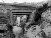 Jak padli první vojáci jednotlivých států za 1. světové války