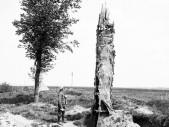 Vychytávky 1. světové války: Falešné stromy jako pozorovatelny