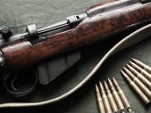 Rosalie: Fascinující příběh kanadského vojáka a jeho pušky
