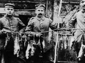 Zvířecí problém za velké války: Krysy v zákopové válce