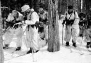 SS Ski-Jäger-Bataillon