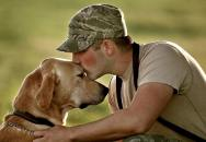 USA připravují legislativu pro asistenční psy veteránů s posttraumatickým syndromem