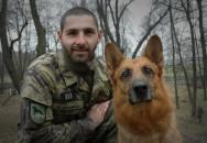 Pes - anonymní a věrný čtyřnohý hrdina, na kterého se můžete vždy spolehnout