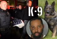 Služební policejní pes K-9 byl ubodán opilým mužem
