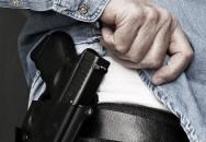 Právo nosit zbraň pro zajištění bezpečnosti Česka senát neschválil - nic závažného se však nestalo