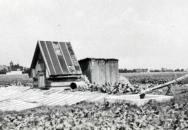 Místo seskoku paraskupiny ANTHROPOID u Nehvizd, východně od Prahy. V napravo stojící dřevěné kůlně ukryli Jan Kubiš s Josefem Gabčíkem po seskoku svůj operační materiál