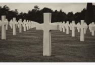 Pocta všem obětem války....