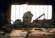 Hrůzy války v obraze