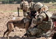 REX - elitní psí pomocník NAVY SEALs