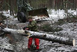 NATO radí, jak zastavit tankový útok vykácením lesa....