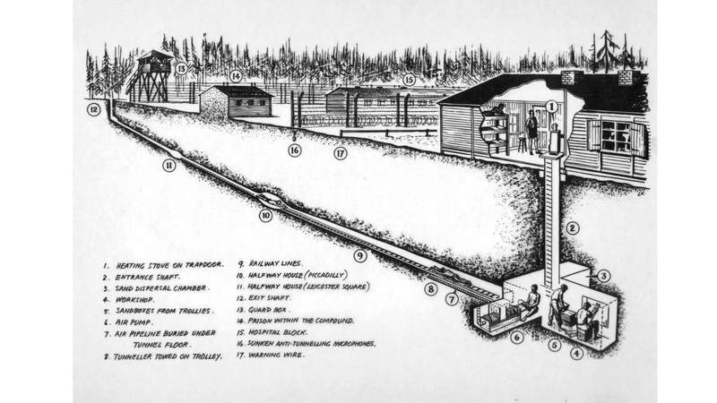 w_tunnel_harry_cutaway_w-mr
